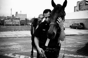 cop and horse