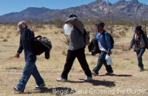 Democrat voters with undiagnosed immigration issues