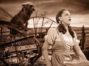 Oh, Toto, we're not going to be in Kansas very long!