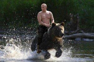 PutinVladBEAR#2