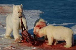 Global warmist dines with his friends up north