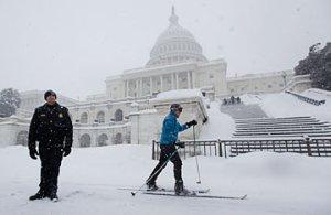 Capitol Bullshit Patrol