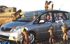 français de lavage de voiture