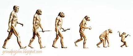 Democrat Evolution