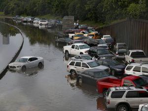 Environmentalists' wet dream