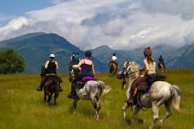 Swiss on horses