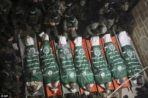 dead terrorists