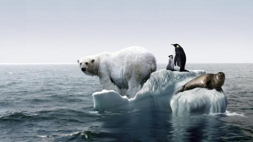global-warming-occur_f66875f8a4ac275e