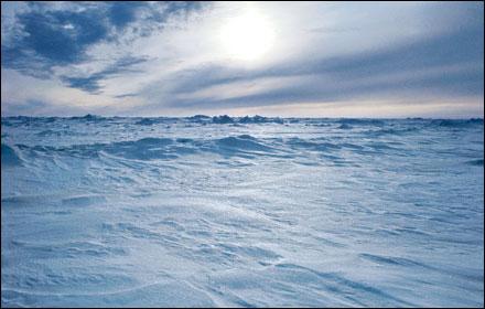 frozen-tundra