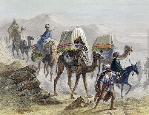 The_Camel_Train