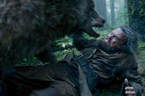 leonardo and the bear