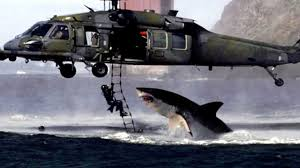 Shark attacks helicopter